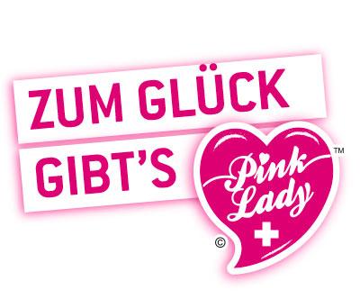 Logo Pinklady-wettbwerb
